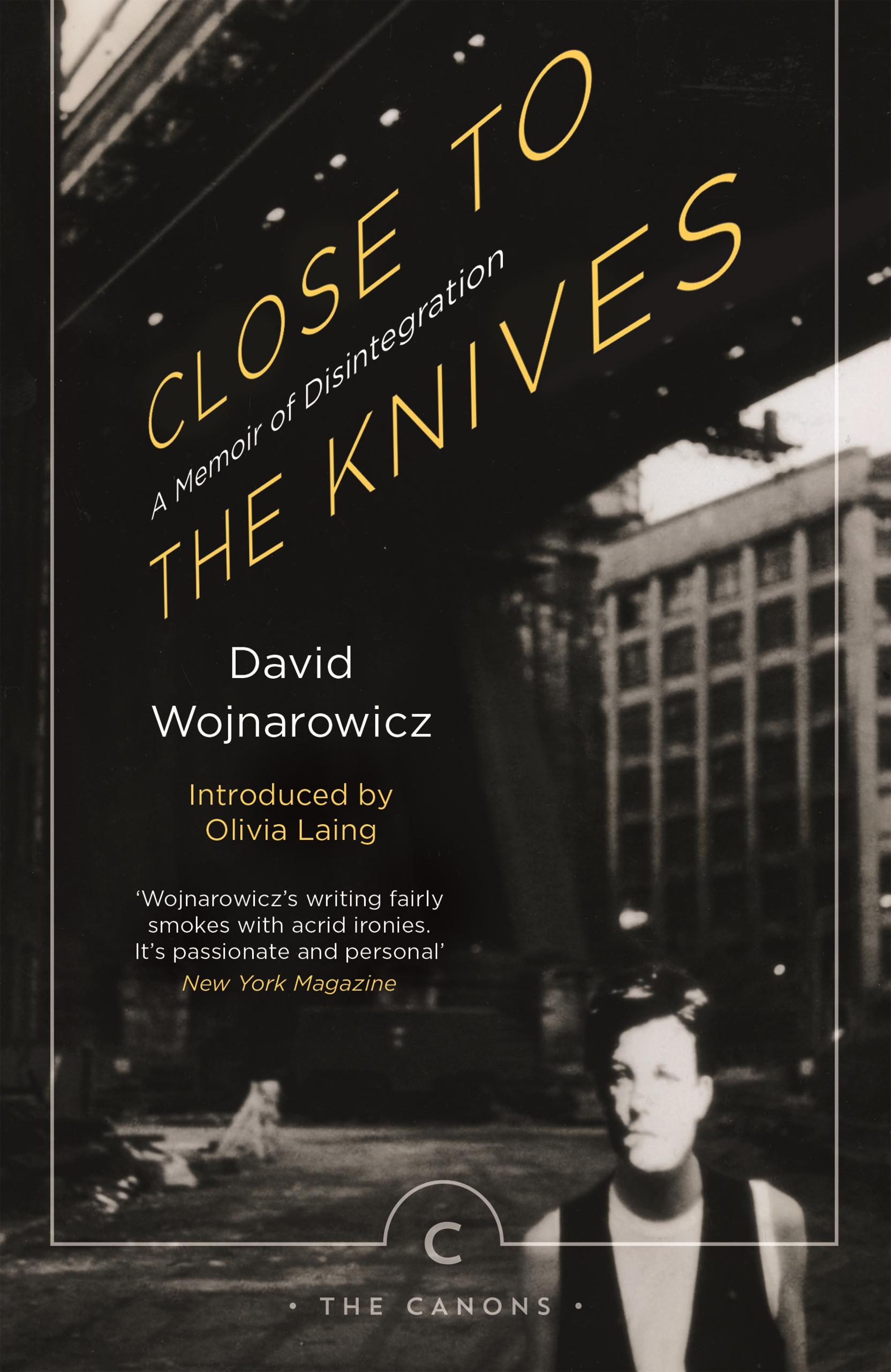 david wojnarowicz re ing the legacy of the pioneering queer as his blistering autobiographical collection of essays close to the knives is reissued i d considers the profound influence of wojnarowicz s work from