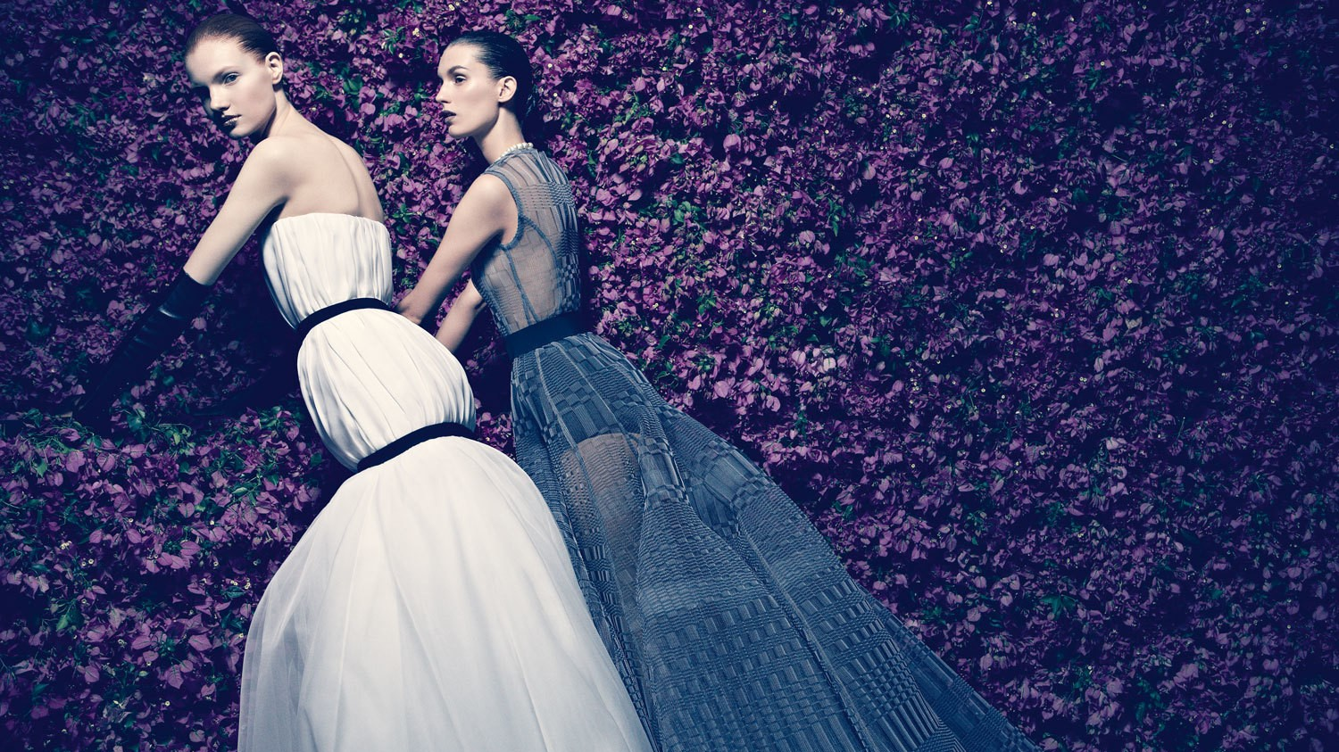 patrick demarchelier shoots dior book