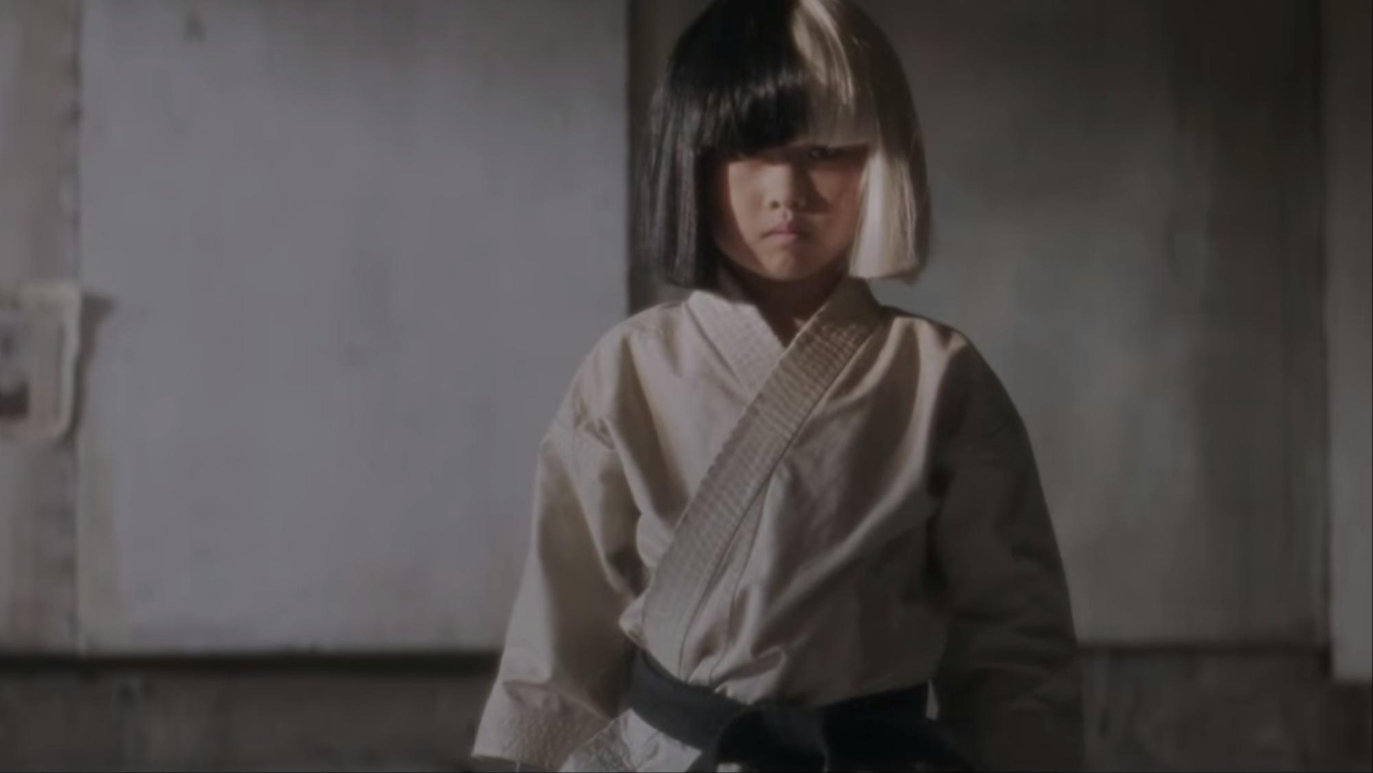 Karate Kid Trilogy Kickass