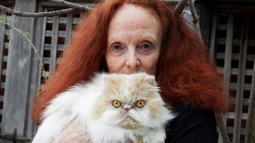 heathermary jackson talks cats, dogs, and dinner with larry clark