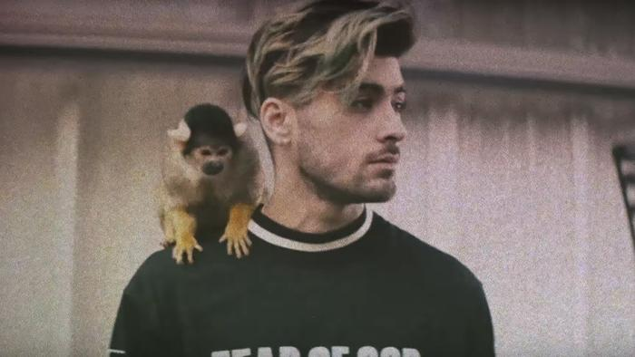 zayn's new video is super sexy summer fun