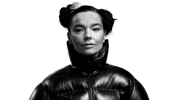 björk says we all need to get off facebook and go for a walk