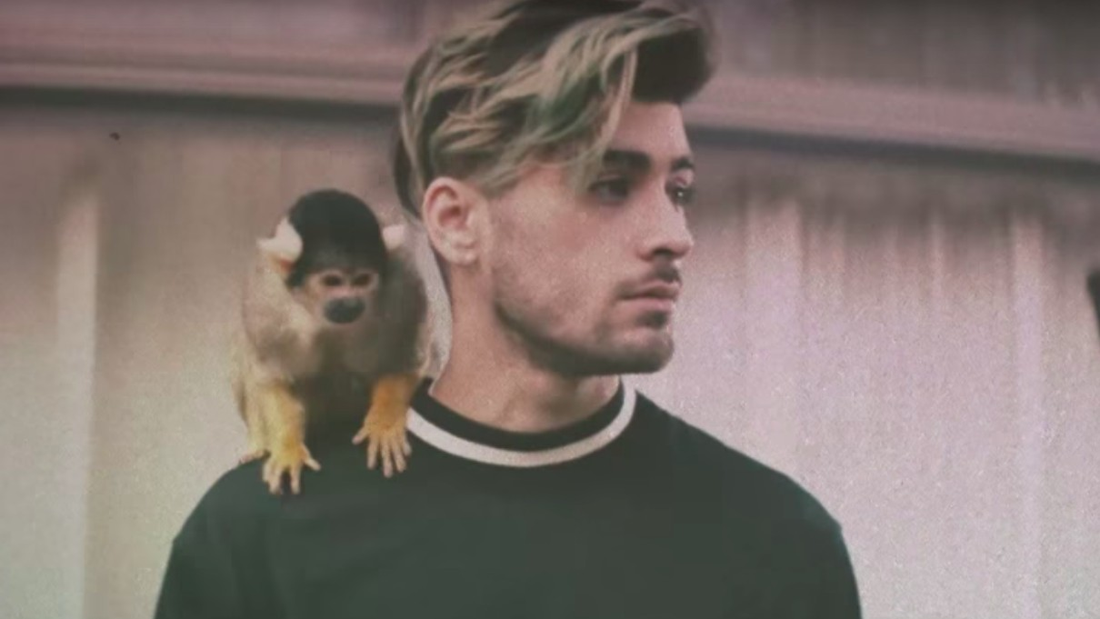 zayn malik recounts being racially profiled by american airport security touring with 1D